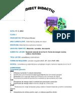 Proiect MEM CLS 1