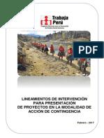 LINEAMIENTOS ACCION DE CONTINGENCIA 2017 (1).pdf
