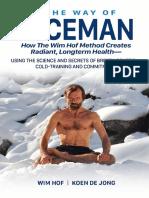 ICEMAN.pdf