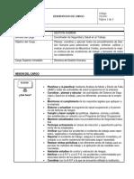 Descripcion de Cargo Coordinador de Salud y Seguridad en El Trabajo