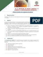 Proyecto-Formativo PRL URJC