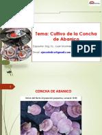 Expo Cultivo Concha Abanico