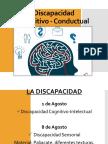 Discapacidad Cognitivo -Intelectual