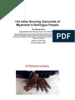 The Slow Burning Genocide of Myanmar Rohingya People