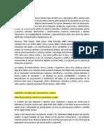 sibercultura aporte 3.docx