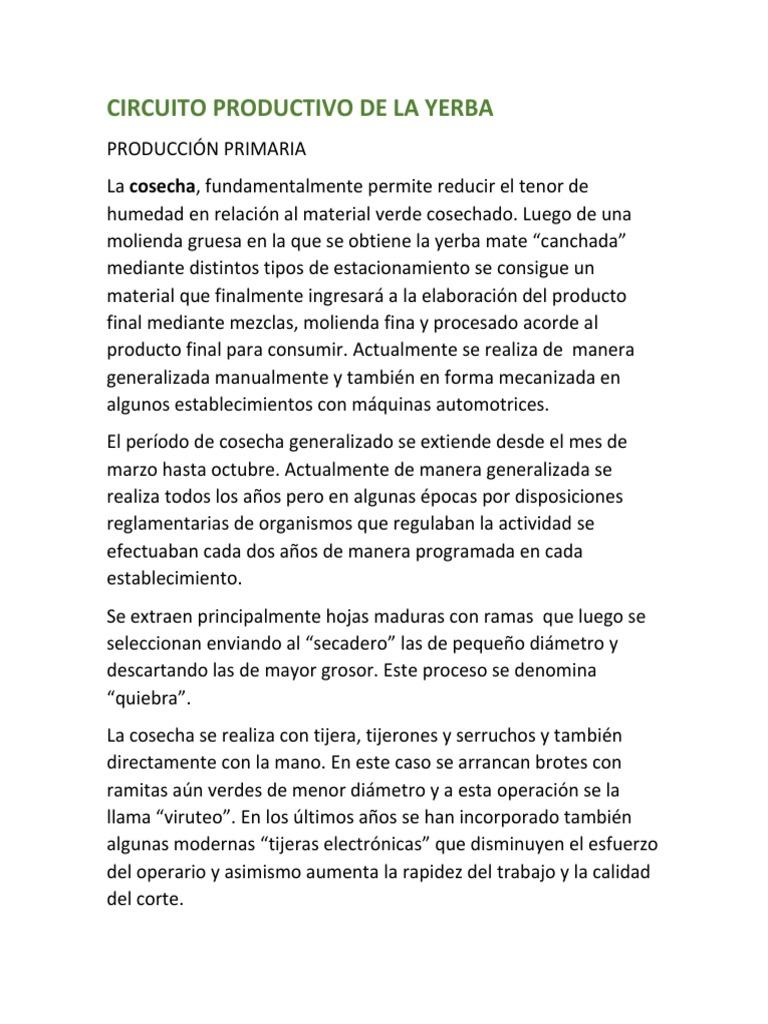 Circuito Yerba Mate : ▷ leyenda de la yerba mate selva y misterio si no es ahora