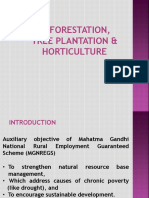4. Tree Plantation