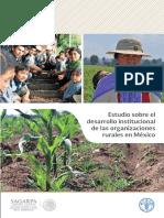 5 Estudio Sobre El Desarrollo Institucional de Las Organizaciones Rurales en México