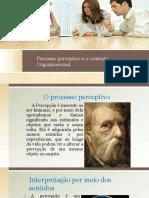 Processo perceptivo e o contexto Organizacional silde.pptx