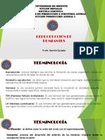 CLASE REPRODUCCION.pdf