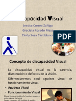 Discapacidad Visual Diap 1225224287914154 8