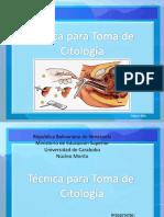 muestra citologia