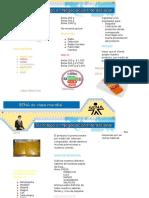 Evidencia 2 presentacion de productos.doc