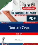 Treinamento Intensivo - Direito Civil TCE-SP