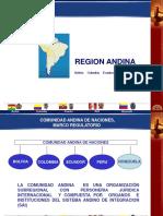 31 Presentacion Victor Dongo Comunidad Andina