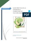 GUIA_PRACTICA_SESIÓN_12 TERMINADO 01.docx