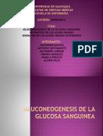 1GLUCOGEONESIS.pptx