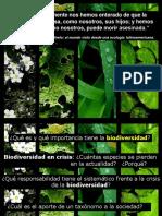Clase1-2013-Biodiversidad
