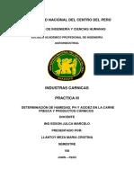 Informe de Practicas Ing Julca