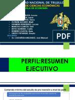 PERFIL.RESUMEN EJECUTIVO 2.pptx