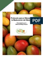 Mango Handling and Ripening Protocol Spn