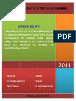 PIÑA APROBADO AGOSTO 2011.docx