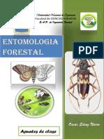 Entomologia Forestal (1) Separata