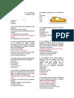 CARRILERÃA_Y_ORUGAS1.docx