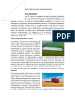 COMPETITIVIDAD EN AGRONEGOCIOS.docx