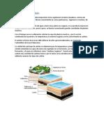 2.Formación Del Carbón y 3tipos de Carbon y en El Peru