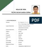 Hoja de Vida Felipe Gadea 1