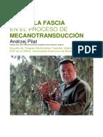 Rol de la Fascia en el Proceso de Mecanotransduccion_Fissioterapia.pdf