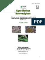 Guia Macroalgas Costa Mich 2008-1