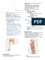 2.08 Brachial Region (Arm) - Compartments, Muscles, Nerves, and Vessels.docx
