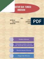 Ppt Ribosom Fix