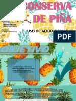 Conserva de Piña Ppt Oficial