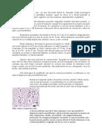 142544625-Boala-Alzheimer-Referat.doc