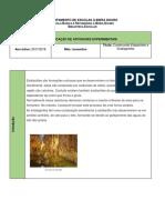 Planificação Atividade_BE_ Simular a Formação de Estalactites e Estalagmites