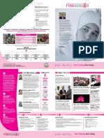Summary of Pinkribbon Campaign 2017