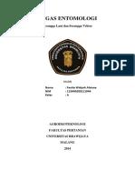 214325459-Tugas-entomologi-1.docx