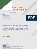 Eje hipotálamo – hipófisis – ovario (H-H-O.pdf