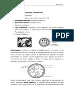 Tema v. Parte 2. Parasitología