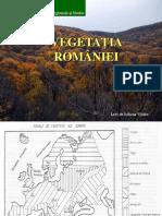 Curs 6 Vegetatia Romaniei