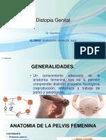 Distopia Genital PPT