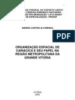 A organização Espacial de Cariacica e seu Papel na RMGV