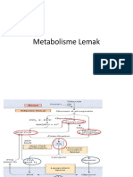 kp-1-4-4-1b-metabolisme-lemak (1)