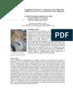 109221993-Caracterizacion-Sedimentologica-de-Canteras-de-Piedra-Laja-en-la-Localidad-de-Yura.pdf