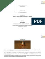 componente práctico_sistemas_operativos_301402.docx