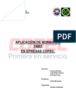 Aplicacion de Norma Iso 14001