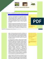 Manual de Hidroponia Popular
